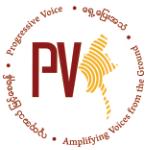 pv-logo-small-03